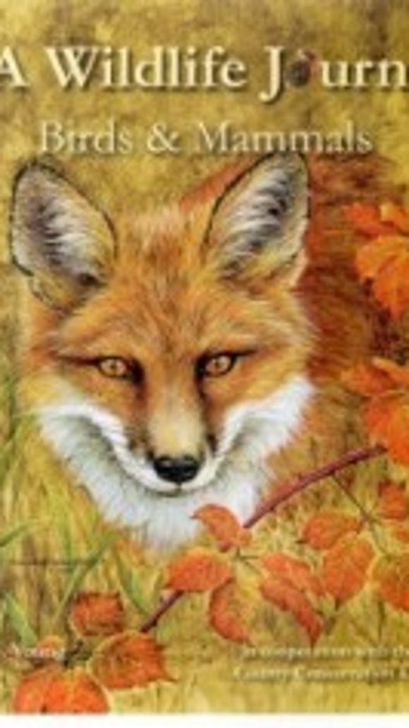 pa-wildlife-journal-yccd