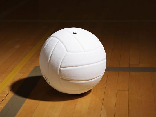 -volleyballX2.jpg_20140408.jpg
