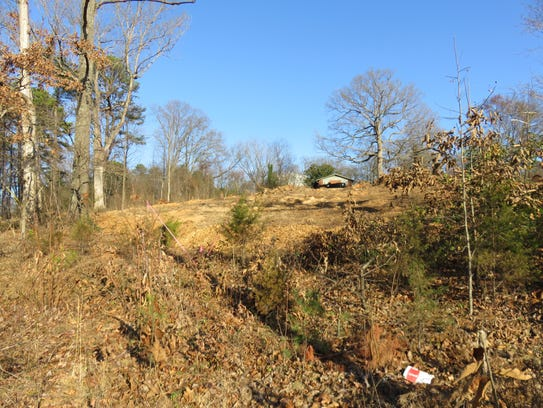 The view up the hillside lot in West Hills from Vanosdale