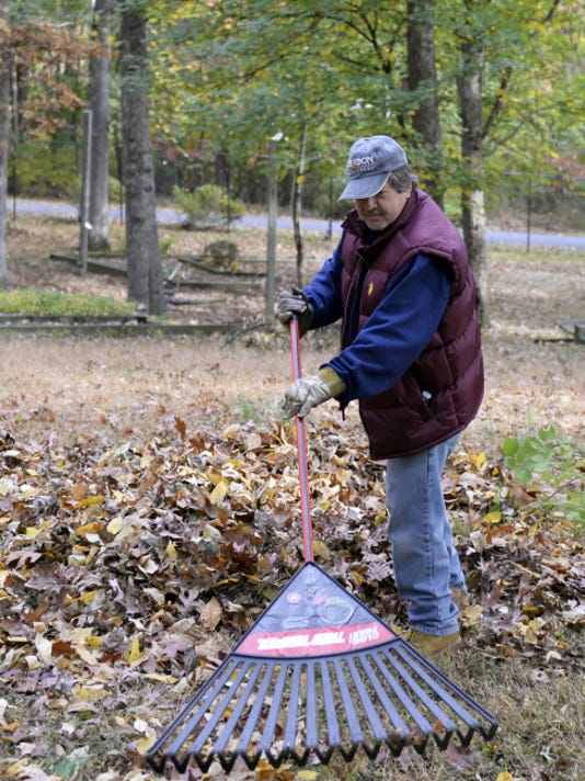 Vince Tricamo, a volunteer for Saturday's Make A Difference Day, rakes leaves into a pile at Coleman Memorial Park.