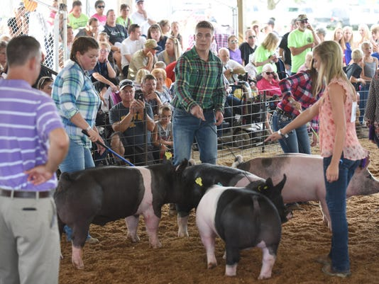 636068932977842892-01-zan-swine-showmanship.jpg