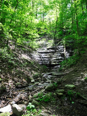 The West Meade Waterfall and three surrounding acres were preserved by the Tennessee Parks and Greenways Foundation and will soon be transferred to Metro Parks. The suburban waterfall is the headwaters to Richland Creek.