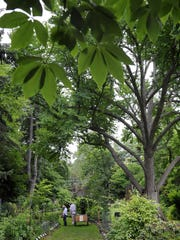 Visitors tour MSU's Beal Botanical Garden on campus in East Lansing on Wednesday.