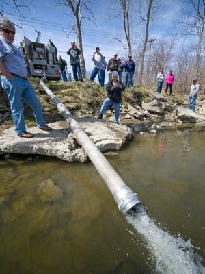 Fish stocking is a critical activity of the DNR. Not only does it help provide diverse fishing opportunities; it also helps support Michigan's economy. Here, year-old Steelhead Salmon are being stocked in the Huron River at Rockwood.