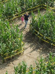 See how well you can navigate Springdale Farms' corn maze. COURIER-POST Cinnaminson residents Lisa Flannery and her daughter Abagail, 2, walk through the corn maze at Springdale Farms in Cherry Hill. Tuesday, September 30, 2008. JOHN ZIOMEK/Courier-Post)