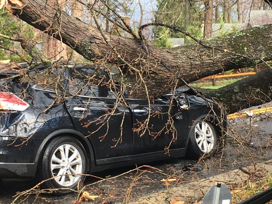 A tree fell on a vehicle in the 1000 block of Barley Mill Road in Greenville on Thursday, April 6, 2017.