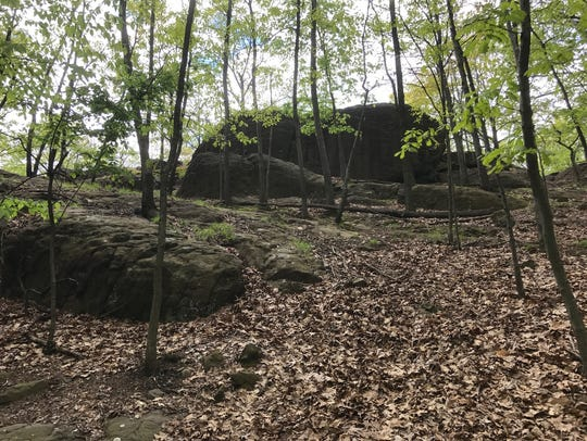 Rifle Camp Park is mostly hiking trails. Passaic County