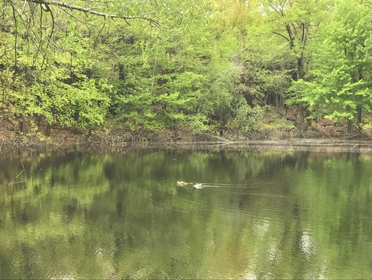 The pond at Rifle Camp Park, a spot favored by hikers