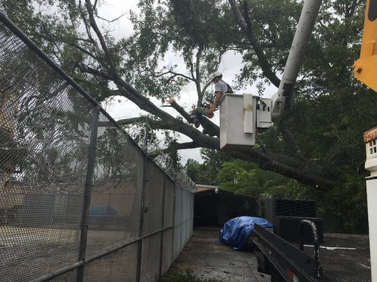 Crews worked Thursday to remove a fallen tree in the Autauga Metro Jail exercise yard.