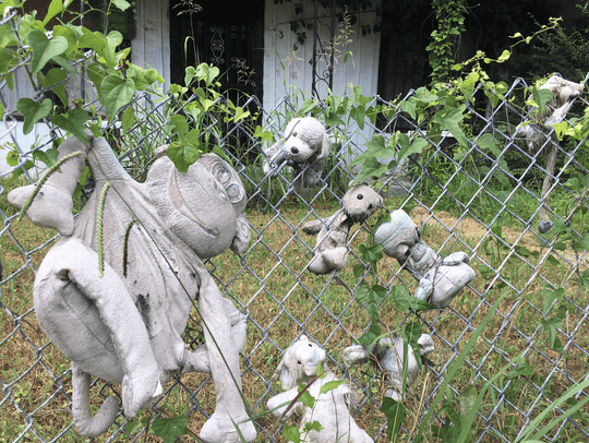 Faded stuffed animals hang on a fence near the intersection