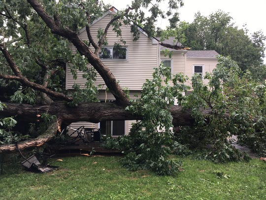 A large tree narrowly misses a home on the 200 block of Atkins Avenue.