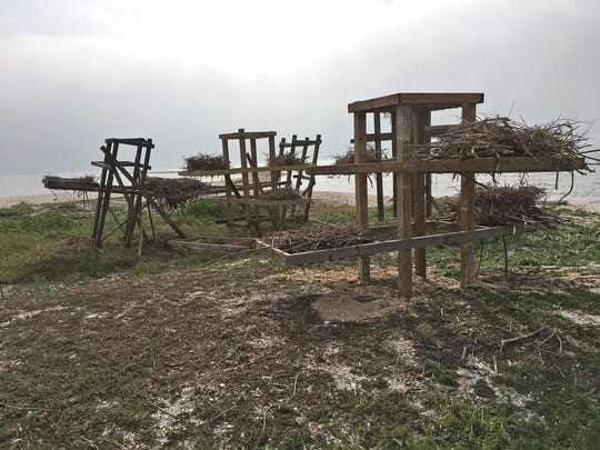 Most of the nesting platforms installed by the Coastal Bend Bays & Estuaries Program were damaged or destroyed by Hurricane Harvey.