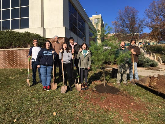 """Dr. Jay Kelly (right), associate professor of Biology and Environmental Science, and RVCC Facilities staff member Jose Geraldo (second from right) stand next to the """"space pine"""" tree planted at RVCC with students (from left) Orland Vasquez, Kristiana Stitt, William Grosch, Sara Blair, Shu Zhen Zhu and Cayla Casucci."""