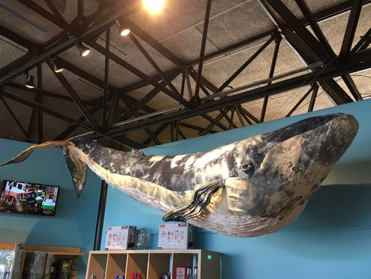 Felicia the Whale, a gift from retailer Anthropologie,