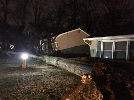 A 75-foot tree fell on a home next door in the first block of Cherokee Drive in the Newark Falls neighborhood in Ogletown on Friday, March 2, 2018.