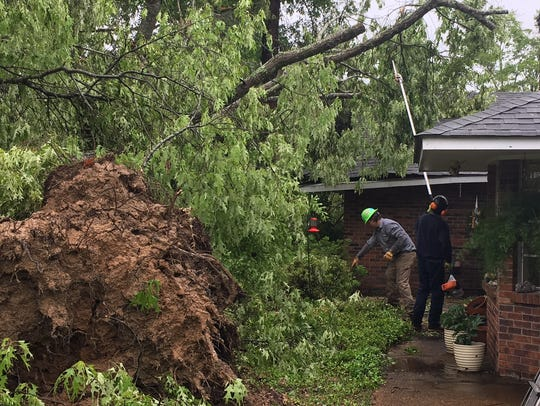 Workers cut limbs off a downed tree in the backyard