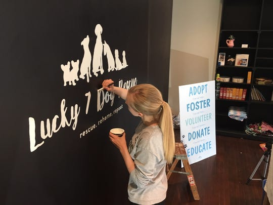 Lucky 7 Dog Rescue volunteer Audrey Thomas paints the organization's logo on a wall in its new space on Broadway in Green Bay.