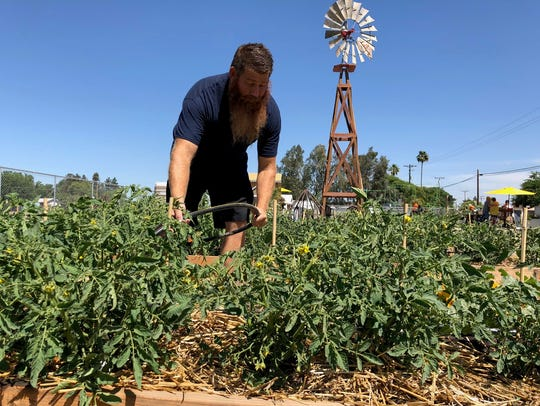 Darian Bourez, owner of Mustard Seed Acre, tends to