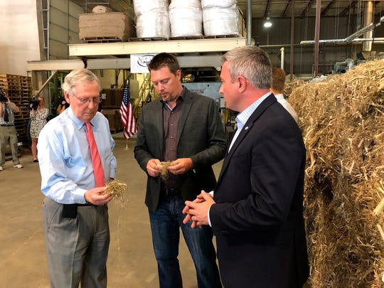 Senate Majority Leader Mitch McConnell inspects a piece of hemp taken from a bale of hemp at a processing plant in Louisville, Ky., Thursday, July 5, 2018. McConnell is leading the push in Congress to legalize hemp. (AP Photo/Bruce Schreiner)