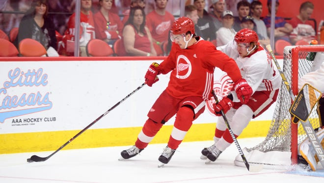 First-round picks Filip Zadina, left, and Dennis Cholowski highlight the top prospects in the Detroit Red Wings organization.