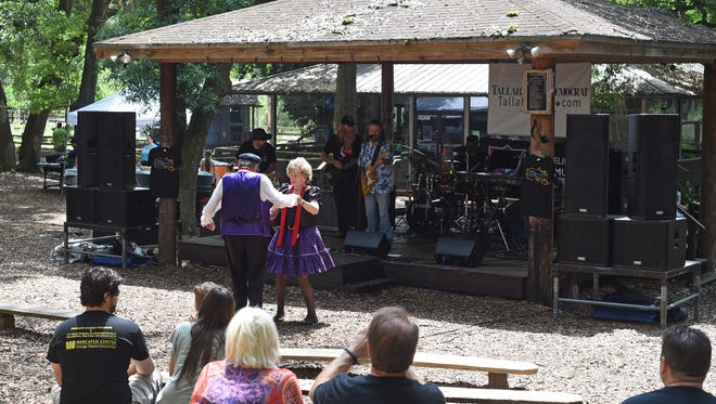 Spectators enjoying previous Tallahassee Jazz & Blues Festival at the Tallahassee Museum.