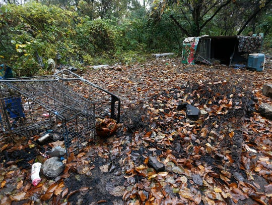 A homeless camp in a wooded area east of the Walmart