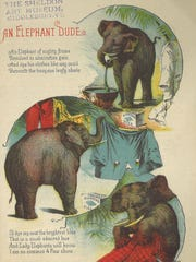 The whimsical ad from, An Elephant Dude, promotes Diamond