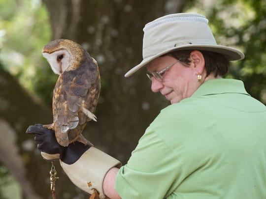 Things are about to get wild as the Treasure Coast Wildlife Center welcomes guests to its inaugural Fine Wine & Art Festival at the Wildlife Center from 2 to 6 p.m. Feb. 2.