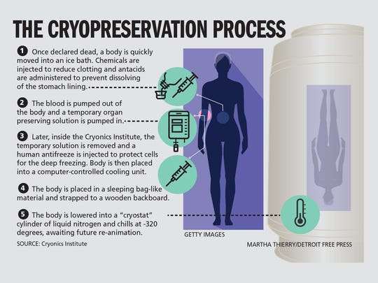 The cryopreservation process