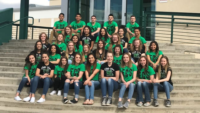 Farmington placed fifth in 5A-6A co-ed cheer and 5A dance competitions at state Saturday in Albuquerque. Aztec, Piedra Vista, Bloomfield and Kirtland Central also competed at state.