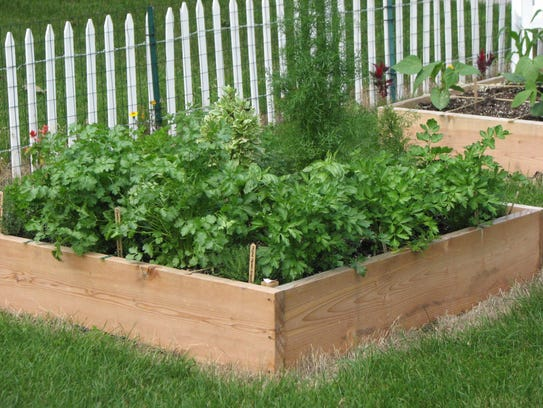 effortless gardening put fun back into gardening with raised beds