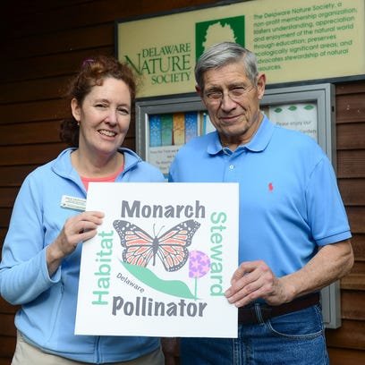 Monarch mission: Man works to save butterflies by saving milkweed