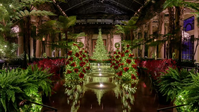 A Longwood Christmas opens Thanksgiving Day.