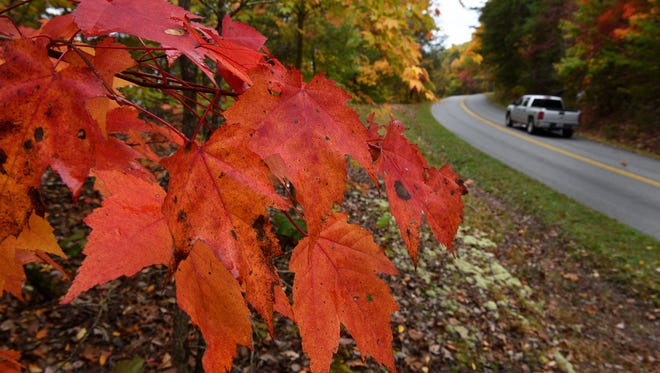 Fall colors can be seen in the Foothills Parkway area of Blount County, Tenn., on Oct. 26, 2015.