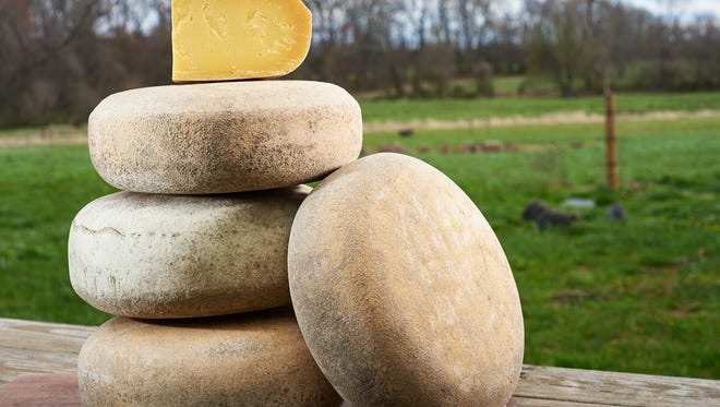 Havilah is a top-selling cheese made from entirely grass-based raw milk at Cherry Grove Farm in Lawrence Township.