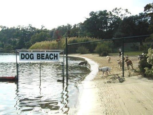 636053909415698405-Dog-Beach.jpg