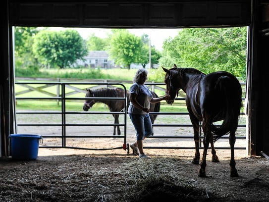 Lori Kepford works in her barn with her horses on Monday