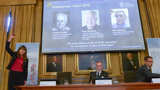 """Professor Sara Snogerup Linse, left  explains why the laureates were awarded as Goran K. Hansson, centre and Claes Gustafsson, members of the Nobel Assembly sit, during a press conference at the Royal Swedish Academy in Stockholm, Wednesday, Oct. 7, 2015. Sweden's Tomas Lindahl, American Paul Modrich and U.S.-Turkish scientist Aziz Sancar won the Nobel Prize in chemistry on Wednesday for """"mechanistic studies of DNA repair."""" (Fredrik Sandberg/ TT News Agency via AP)  SWEDEN OUT"""
