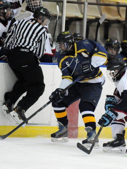 PQ-Hockey-12631814.JPG