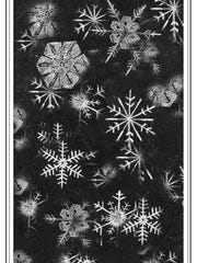 To collect snowflakes, keep a sheet of stiff black paper in the freezer; let snowflakes land on the paper; use a magnifying glass to study the individual flakes in a cold protected area.