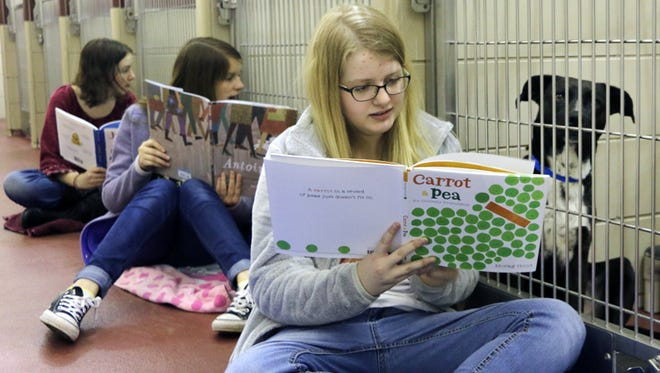 Central Magnet middle school students Caitlin Seaborn (foreground), Meredith Anderson (middle), and Anna Kraft (background) read to the shelter dogs at PAWS of Rutherford County.