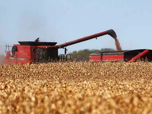 Crop values drop 9.8% in 2013 as prices fall