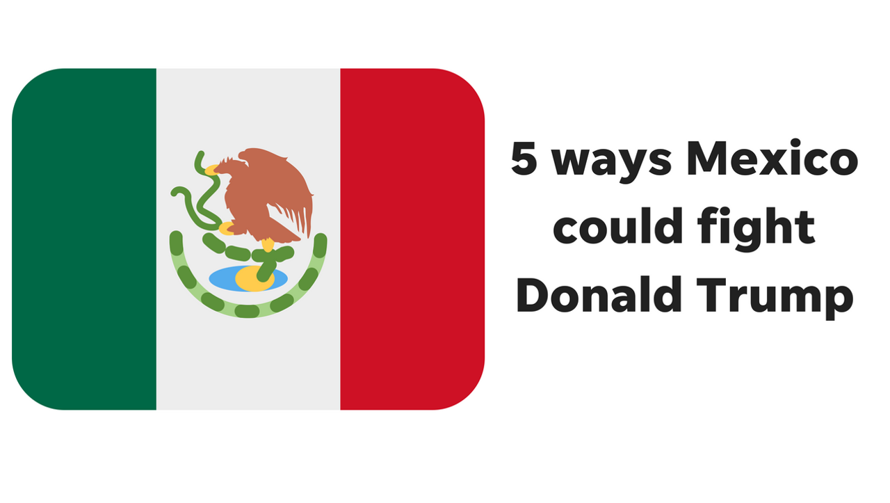 Mexico doesn't like President Trump's immigration and trade ideas. Here are 5 ways the country could fight back, according to Arizona Republic columnist Elvia Diaz.