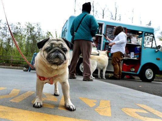 635961491247695774-Dog-Food-Truck-WATW202.jpg
