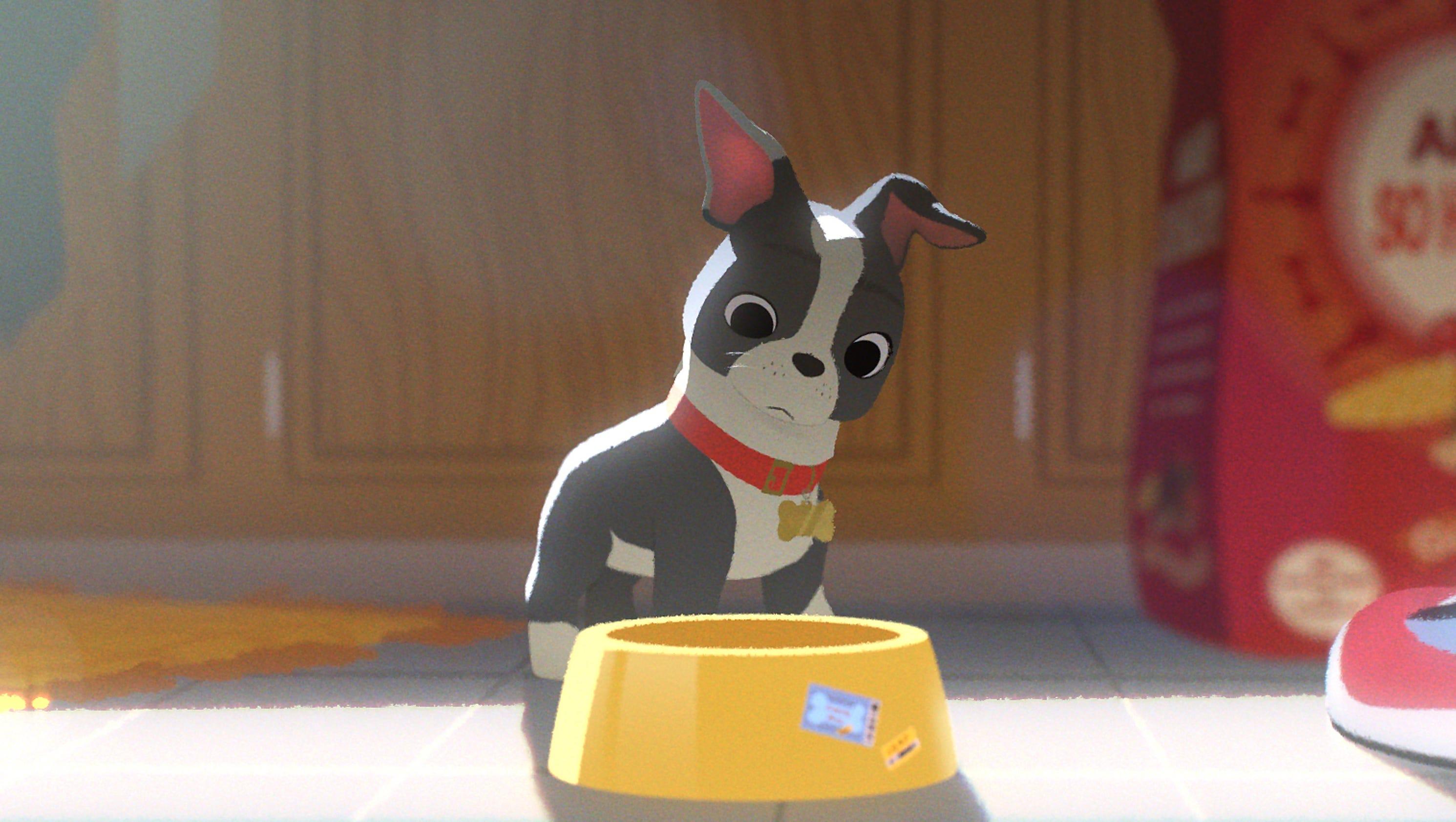Woody S Pet Food