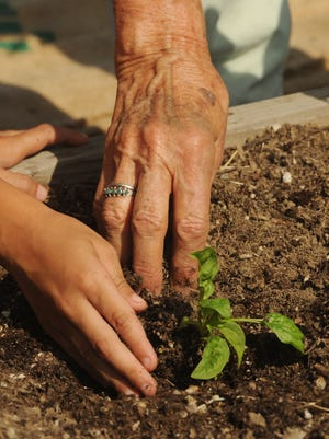 Eloise Brumage helps a child plant spinach at the First Baptist Church Community Garden in Camarillo.