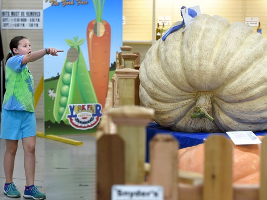 Bailey Hockenberry, 9, of Lancaster, eyes up the 934 lb. pumpkin on display at Horticulture Hall at the York Fair on Saturday.