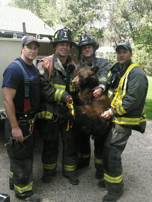 First responders pose with a bear captured in Campus West Wednesday afternoon.
