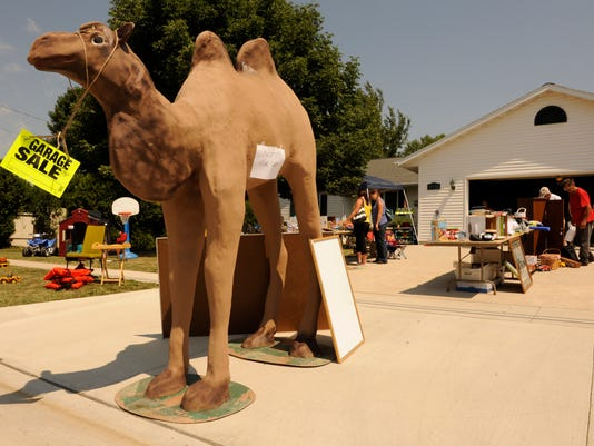 MAN n Camel.jpg