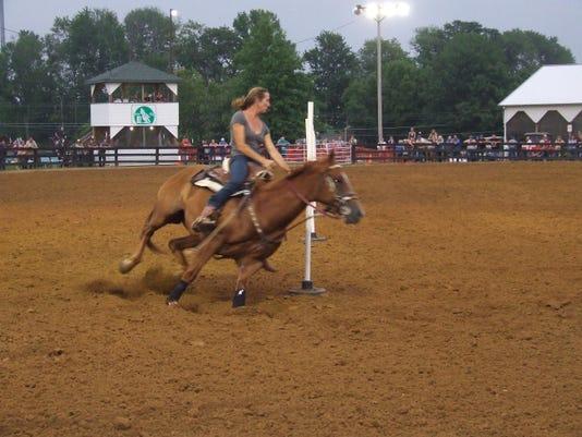 Horse photo 2